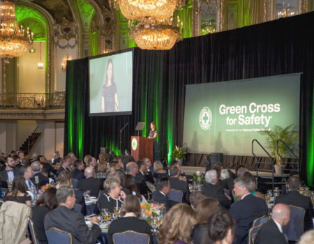 Green Cross Awards 2018